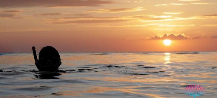 Phuket speedboat charter to Twilight Snorkeling Tour
