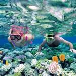 Speedboat Snorkeling Tour
